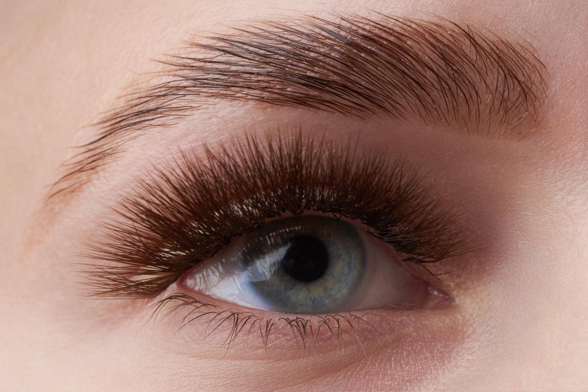 eyebrow_lamination